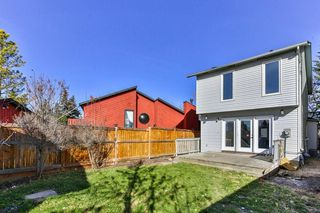 Photo 26: 47 TEMPLEGREEN Place NE in Calgary: Temple Detached for sale : MLS®# C4273952
