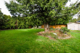 Photo 20: 522 MILSOM Wynd in Delta: Pebble Hill House for sale (Tsawwassen)  : MLS®# R2430086