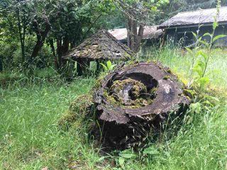Photo 21: 281 STURDIES BAY Road: Galiano Island House for sale (Islands-Van. & Gulf)  : MLS®# R2450030