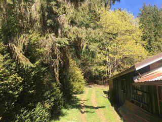 Photo 8: 281 STURDIES BAY Road: Galiano Island House for sale (Islands-Van. & Gulf)  : MLS®# R2450030