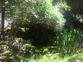 Photo 31: 281 STURDIES BAY Road: Galiano Island House for sale (Islands-Van. & Gulf)  : MLS®# R2450030