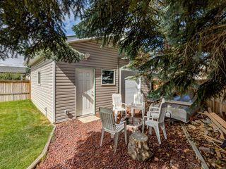 Photo 46: 44 MAITLAND Green NE in Calgary: Marlborough Park Detached for sale : MLS®# A1030134