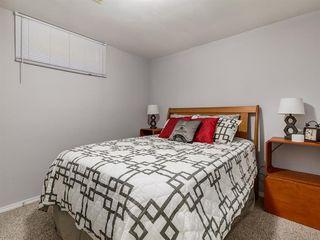 Photo 37: 44 MAITLAND Green NE in Calgary: Marlborough Park Detached for sale : MLS®# A1030134
