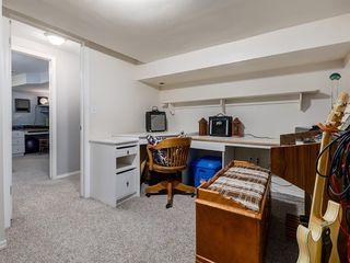 Photo 42: 44 MAITLAND Green NE in Calgary: Marlborough Park Detached for sale : MLS®# A1030134