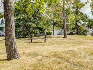 Photo 50: 44 MAITLAND Green NE in Calgary: Marlborough Park Detached for sale : MLS®# A1030134