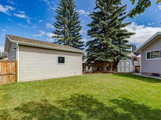 Photo 47: 44 MAITLAND Green NE in Calgary: Marlborough Park Detached for sale : MLS®# A1030134