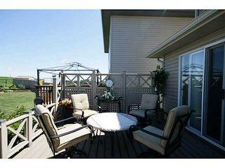 Photo 19: 450 CITADEL MEADOW BA NW in CALGARY: Citadel House for sale (Calgary)  : MLS®# C3625632