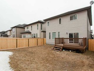 Photo 20: 5119 2 AV SW in : Zone 53 House for sale (Edmonton)  : MLS®# E3407228