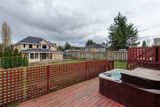 Photo 19: 2318 IMPERIAL STREET in Abbotsford: Abbotsford West House for sale : MLS®# R2045768