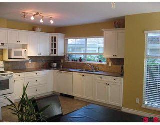 Photo 2: 25 8428 VENTURE Way: Fleetwood Tynehead Home for sale ()  : MLS®# F2922381