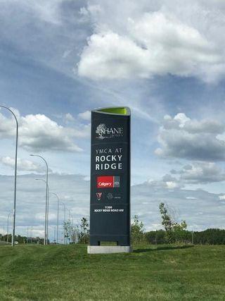 Photo 41: 165 ROYAL OAK Terrace NW in Calgary: Royal Oak Detached for sale : MLS®# C4299974