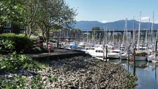 """Photo 18: 403 456 MOBERLY Road in Vancouver: False Creek Condo for sale in """"Pacific Cove"""" (Vancouver West)  : MLS®# R2470128"""