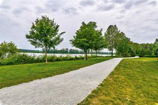 Photo 39: 2 10974 BARNSTON VIEW ROAD in Pitt Meadows: South Meadows Townhouse for sale