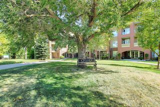 Photo 41: 6401 14 HEMLOCK Crescent SW in Calgary: Spruce Cliff Apartment for sale : MLS®# A1036904