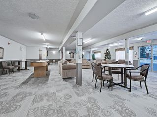 Photo 23: 213 5000 Somervale Court SW in Calgary: Somerset Apartment for sale : MLS®# A1056423