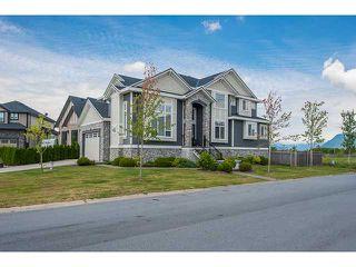 "Photo 1: 12493 DAVENPORT Drive in Maple Ridge: Northwest Maple Ridge House for sale in ""MCIVOR MEADOWS"" : MLS®# V964764"