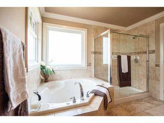 "Photo 16: 12493 DAVENPORT Drive in Maple Ridge: Northwest Maple Ridge House for sale in ""MCIVOR MEADOWS"" : MLS®# V964764"