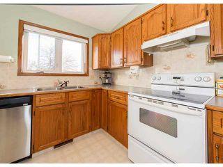 Photo 10: 153 HARVEST OAK Way NE in CALGARY: Harvest Hills Residential Detached Single Family for sale (Calgary)  : MLS®# C3552765