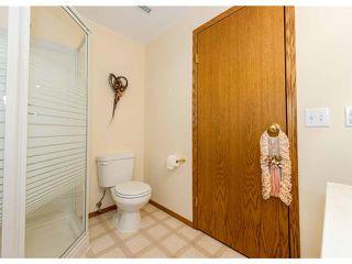 Photo 20: 153 HARVEST OAK Way NE in CALGARY: Harvest Hills Residential Detached Single Family for sale (Calgary)  : MLS®# C3552765