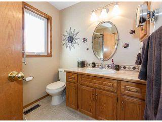 Photo 13: 153 HARVEST OAK Way NE in CALGARY: Harvest Hills Residential Detached Single Family for sale (Calgary)  : MLS®# C3552765