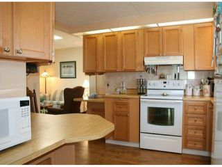 """Photo 5: 35 2120 KING GEORGE Boulevard in Surrey: King George Corridor Manufactured Home for sale in """"Five Oaks"""" (South Surrey White Rock)  : MLS®# F1421905"""