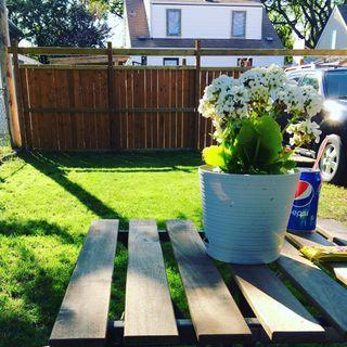 Photo 9: 1172 Valour Road in Winnipeg: Sargent Park Single Family Detached for sale (5C)  : MLS®# 1810002