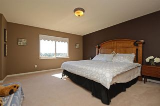 Photo 6: 23818 112 Ave in Maple Ridge: Cottonwood House for sale : MLS®# R2337140
