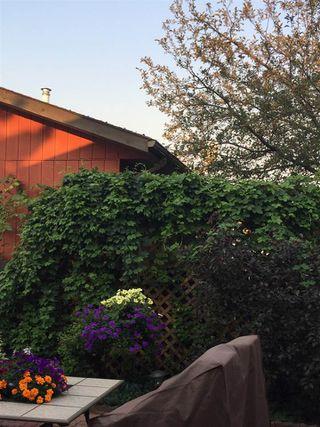 Photo 43: 9819 165 Avenue in Edmonton: Zone 27 House for sale : MLS®# E4187466
