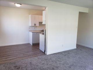Photo 5: 204 9120 106 Avenue in Edmonton: Zone 13 Condo for sale : MLS®# E4193723