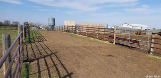 Photo 19: 7/4 Game Fenced Ranch RM 092 in Fairlight: Farm for sale : MLS®# SK805896