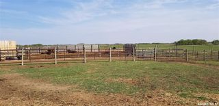 Photo 18: 7/4 Game Fenced Ranch RM 092 in Fairlight: Farm for sale : MLS®# SK805896
