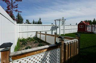 Photo 32: 16013 46 Street in Edmonton: Zone 03 House for sale : MLS®# E4199853