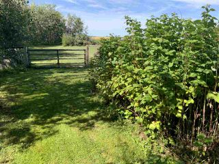 Photo 10: 450010 RGE RD 265: Rural Wetaskiwin County House for sale : MLS®# E4212276