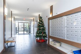 Photo 4: 413 2943 NELSON Place in Abbotsford: Central Abbotsford Condo for sale : MLS®# R2518757