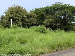 Photo 3:  in Chame: Commercial for sale : MLS®# Commercial Lot Chame