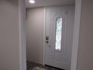 Photo 14: 1 Ellis Court (basement suite) in St. Albert: Basement Suite for rent