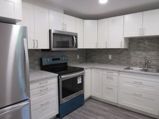 Photo 2: 1 Ellis Court (basement suite) in St. Albert: Basement Suite for rent