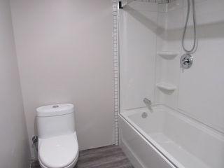 Photo 10: 1 Ellis Court (basement suite) in St. Albert: Basement Suite for rent