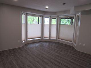 Photo 5: 1 Ellis Court (basement suite) in St. Albert: Basement Suite for rent