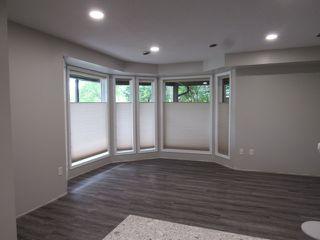 Photo 6: 1 Ellis Court (basement suite) in St. Albert: Basement Suite for rent