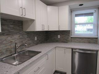 Photo 3: 1 Ellis Court (basement suite) in St. Albert: Basement Suite for rent