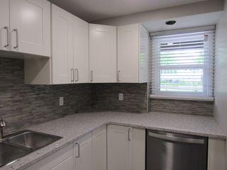 Photo 4: 1 Ellis Court (basement suite) in St. Albert: Basement Suite for rent