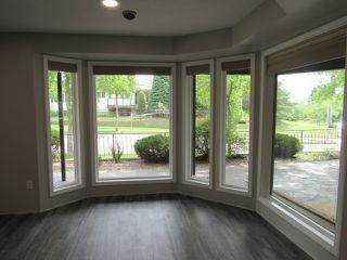 Photo 1: 1 Ellis Court (basement suite) in St. Albert: Basement Suite for rent