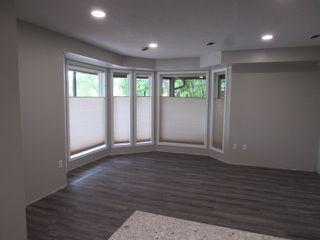Photo 13: 1 Ellis Court (basement suite) in St. Albert: Basement Suite for rent