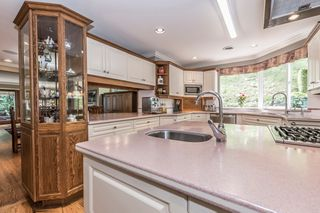 Photo 28: 43810 CHILLIWACK MOUNTAIN ROAD in Chilliwack: Chilliwack Mountain House for sale or rent : MLS®# R2425979