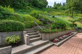 Photo 80: 43810 CHILLIWACK MOUNTAIN ROAD in Chilliwack: Chilliwack Mountain House for sale or rent : MLS®# R2425979