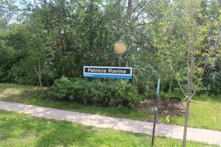 Photo 29: 16607 78 Avenue in Edmonton: Zone 22 House for sale : MLS®# E4166555