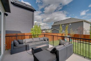 Photo 43: 134 CRANBROOK Circle SE in Calgary: Cranston Detached for sale : MLS®# A1028295