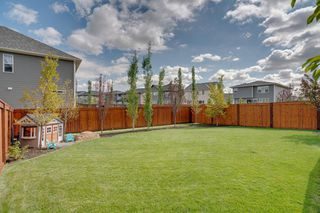 Photo 42: 134 CRANBROOK Circle SE in Calgary: Cranston Detached for sale : MLS®# A1028295