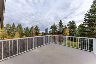 Photo 37: 462064A Hwy 771: Rural Wetaskiwin County House for sale : MLS®# E4217484